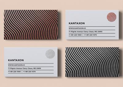 Kantaxon Card